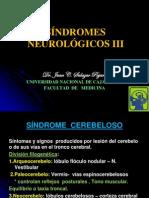 3 Grandes Sindromes Neurologicos Otros