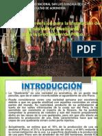 Proyecto Vid Para Pisco