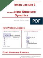 Power Point - Schekman Lecture 3, Membrane Structure Dynamics
