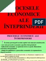 5_PROCESELE_  ECONOMICE
