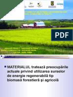 EU_Biomasa