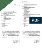 Tic Test de Evaluare Cls X