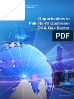 Opportunities in Pakistan Upstream Oil & Gas Sector-2013