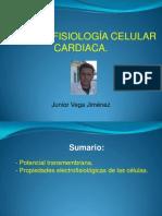 Electrofisiología Celular Cardiaca
