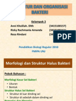 Struktur Dan Organisasi Bakteri Fix