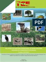 Relatório de auditoria operacional do Tribunal de Contas do Pará sobre a gestão de Unidades de Conservação