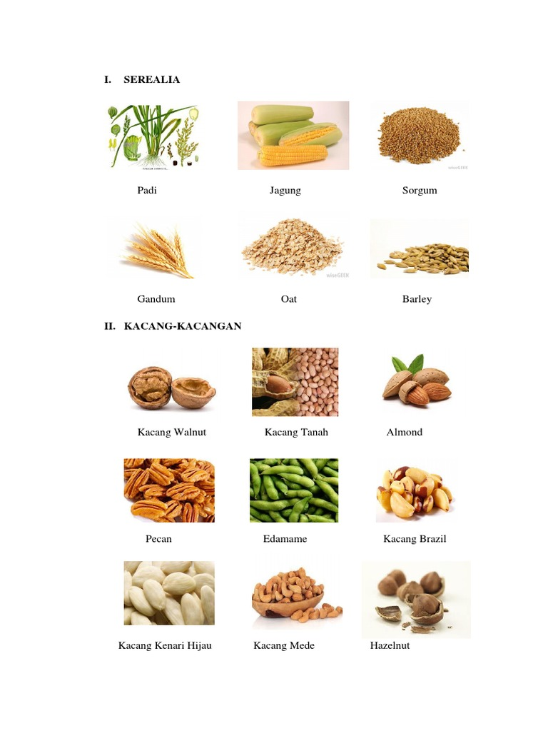 Serealia Kacang Kacangan Umbi Umbian