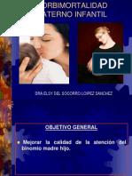 mortalidad materno infantil