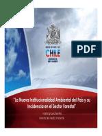 02 La Nueva Institucionalidad Ambiental Del Pais - Maria Ignacia Benitez