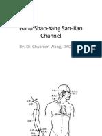 Class 8 - Hand Shao-Yang San-Jiao Channel