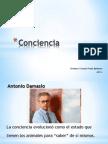 Conciencia_2012