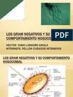 Los Gram Negativos y Su Comportamiento Nosocomial