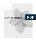 Agricultura Ecologica Especies de Vegetacion Espontanea Plantas Bioindicadoras