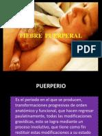 Fiebre Puerperal CHICAS
