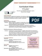 AA Bauza Joseluis - Curriculum Vitae