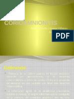 corioamnionitis-130625221642-phpapp02