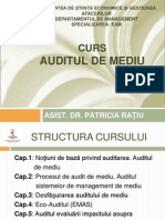 audit curs