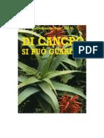 Di Cancro Si Può Guarire - Padre Romano Zago -Doc Di Angela Di Gregorio PDF