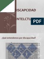 presentacion discapcidad