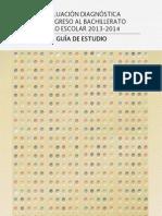 1_Guia_eval_diag_ingreso_2013-2014.pdf
