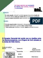 Ruido Efectos Sobre La Salud.ppt 1