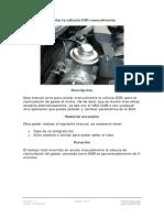 anular valvula egr manualmente.pdf