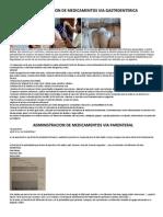 Administracion de Medicamentos via Gastroenterica
