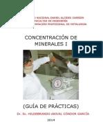 Guia de Practicas Conc. i - 2014