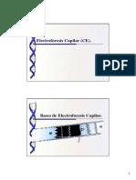 Electroforesis Capilar Presentacion[1]