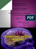ENCEFALO_CRANEANO1 (1)