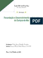Fecundação e Desenvolvimento Embrionário de Ouriços-do-Mar