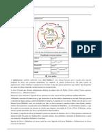 Equinococose (1)