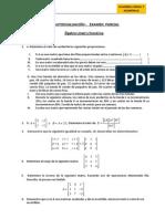 Autoevaluación - EXAMEN PARCIAL 14 - 1 Álgebra Lineal y Numérica