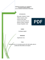 Medicion de Fotosíntesis LISTO