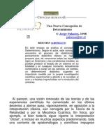 Jorge Adriano, Palacios Calmann, Una Nueva Concepción de Determinismo