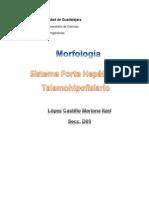 Tarea Sobre-_(Sistema Porta Hepatico y Talamo Hipofisiario de (Mariana Itzel López Castillo)