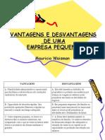 VANTAGENS E DESVANTAGENS DE UMA EMPRESA PEQUENA