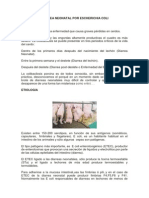 Diarrea Neonatal Por Escherichia Coli1