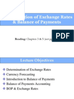 Exchange Rate and Balance of Payment