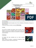 FT Micróbios