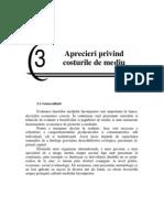CAPITOLUL 3 APRECIERI PRIVIND COSTURILE DE MEDIU.pdf