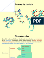 biomoleculas3