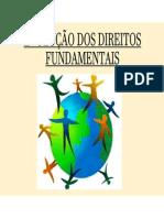 Aula 04 - Teoria Dos Direitos Fundamentais - Evolução Dos Direitos Fundamentais