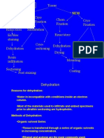 Standard Preparation TEM Chem. Fixation Rinse/Store en Bloc Staining Dehydration