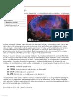 Receta de Queimada Gallega - Recetasderechupete.pdf