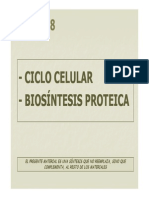 08_14Ciclo_Biosint.pdf