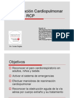 RCP__-_completo.pdf
