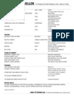 andy ottenweller resume