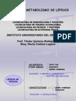 Metabolismo de LIPIDOS I