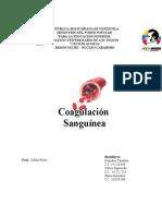 Coagulacion Sanguinea